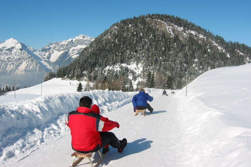 Tobogganing and Ice Skating in the Alpbachtal & Seenland